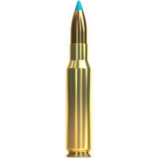 .308 Win S&B tipped eXergy blue 110 grs. 20Stk.