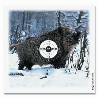 Wildschwein-Scheibe 14 x 13,5