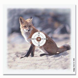 Fuchs-Scheibe 14 x 13,5